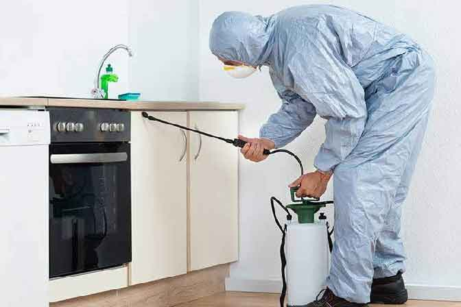 Residential Pest Control Services In P and T Colony